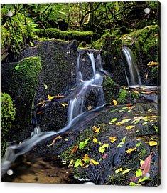Emerald Cascades Acrylic Print