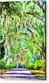 Acrylic Print featuring the photograph Mossy Oak Pathway H D R by Lisa Wooten