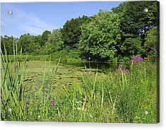 Mossy Pond Acrylic Print