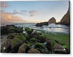 Mossy Rocks At The Beach Acrylic Print