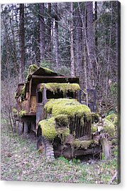 Mossy Truck Acrylic Print by Gene Ritchhart