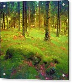 Mossy Woods Acrylic Print by Lutz Baar