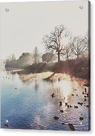 Mote Park Winter Morning  Acrylic Print by Stuart Ellesmere