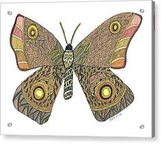 Moth Acrylic Print