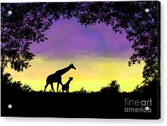 Mother And Baby Giraffe At Sunset Acrylic Print