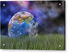 Mother Earth Series Plate4 Acrylic Print by Betsy Knapp