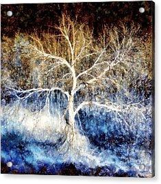 Mother Natures Dance Acrylic Print