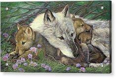 Mother's Comfort Acrylic Print