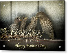 Mother's Day Greetings Acrylic Print by Alan Toepfer