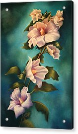 Mothers Rose Of Sharon Acrylic Print by Marti Bailey