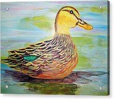 Mottled Duck Acrylic Print by Belinda Lawson