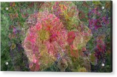 Mottled Pink Collage Pop Acrylic Print