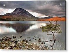 Mount Errigal Acrylic Print by Pawel Klarecki