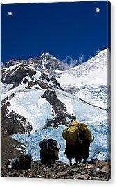Mount Everest Acrylic Print by Gaurav Agrawal