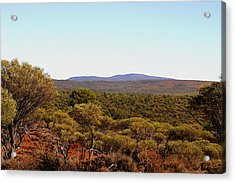 Mount Gibson Station To Mt Singleton Acrylic Print