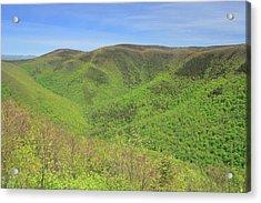 Mount Greylock Stony Ledge Spring Leafout Acrylic Print by John Burk