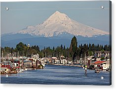 Mount Hood And Columbia River House Boats Acrylic Print by David Gn