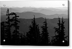 Mount Hood National Forest Acrylic Print