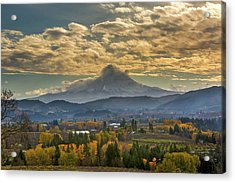 Mount Hood Over Farmland In Hood River In Fall Acrylic Print