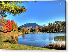 Mount Jefferson Reflection Acrylic Print by Dale R Carlson