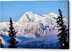 Acrylic Print featuring the photograph Mount Mckinley by Adam Owen