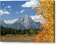 Mount Moran In Autumn Acrylic Print by Larry Ricker