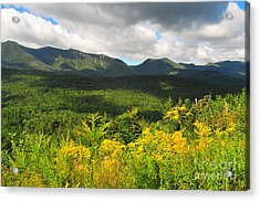 Mount Osceola Acrylic Print by Catherine Reusch Daley