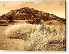 Mount Scott In Sepia Acrylic Print by Mickey Harkins