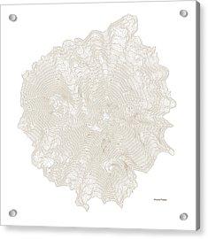 Mount Shasta Art Print Contour Map Of Mount Shasta In California Acrylic Print