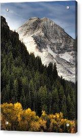 Mount Timpanogos 1 Acrylic Print
