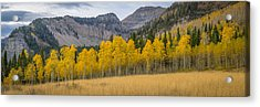 Mount Timpanogos Meadow In Fall Acrylic Print