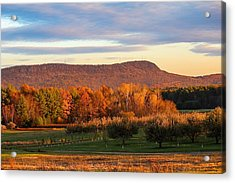 Mount Tom Foliage View Acrylic Print