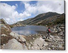 Mount Washington - New Hampshire Usa Lakes Of The Clouds Acrylic Print