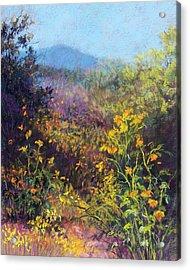 Mountain Beauty Acrylic Print by Candy Mayer