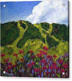 Mountain Blooms Acrylic Print