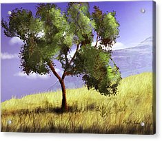 Acrylic Print featuring the digital art Mountain Clear by Barry Jones