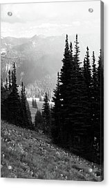 Mountain Flowers Acrylic Print