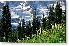 Mountain Flowers Acrylic Print by Scott Nelson