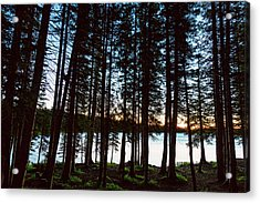Acrylic Print featuring the photograph Mountain Forest Lake by James BO Insogna