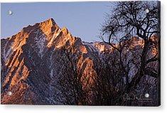 Mountain High Acrylic Print by Peter McCracken