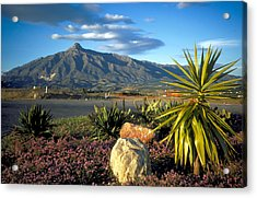 Mountain In Marbella Acrylic Print by Carl Purcell