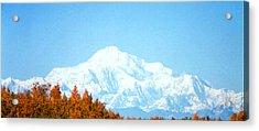 Acrylic Print featuring the photograph Mountain by Judyann Matthews
