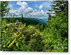 Acrylic Print featuring the photograph Mountain Laurel And Ridges by Thomas R Fletcher