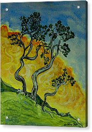 Mountain Laurel Acrylic Print by W Gilroy