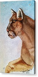 Mountain Lion Acrylic Print by Rand Swift