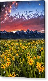 Mountain Meadow Acrylic Print