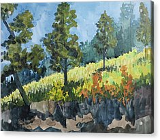 Mountain Meadow Acrylic Print by Bethany Lee