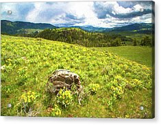 Mountain Meadow Impressionist Digital Art Acrylic Print