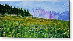 Mountain Meadow Wildflowers Acrylic Print