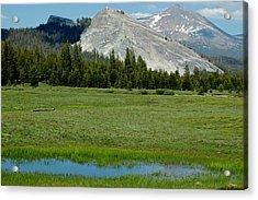Mountain Meadows Of Yosemite Acrylic Print by LeeAnn McLaneGoetz McLaneGoetzStudioLLCcom